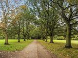Thumbnail image 13 of South Eden Park Road