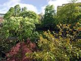 Thumbnail image 6 of Southwick Street