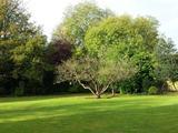 Thumbnail image 6 of Woodside
