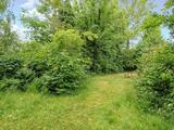 Thumbnail image 7 of Wickham Road