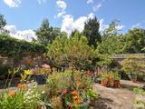 Thumbnail image 5 of Upper Shirley Road