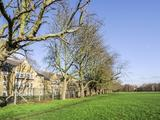 Thumbnail image 16 of John Archer Way
