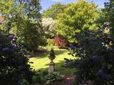 Thumbnail image 2 of King William IV Gardens