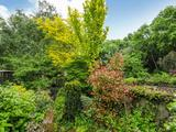 Thumbnail image 11 of Finchley Park