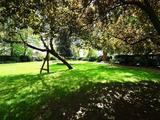 Thumbnail image 10 of Kensington Gardens Square