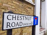 Thumbnail image 2 of Chestnut Road