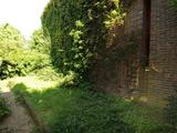 Thumbnail image 6 of Clive Road