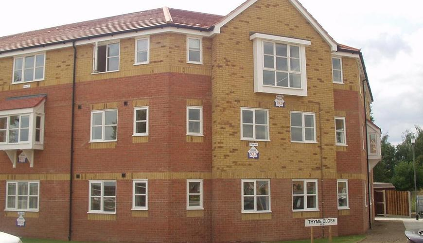 Photo of Thyme Close