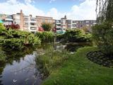 Thumbnail image 12 of Roehampton Lane