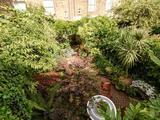 Thumbnail image 16 of Bramshill Gardens