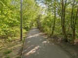 Thumbnail image 10 of Elgin Avenue
