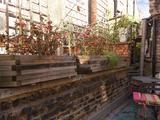 Thumbnail image 12 of Ovington Mews