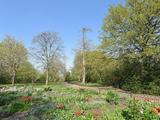Thumbnail image 16 of Manor Park