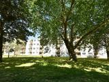 Thumbnail image 5 of Nunhead Lane