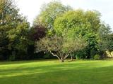 Thumbnail image 3 of Woodside