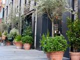 Thumbnail image 6 of Sloane Avenue