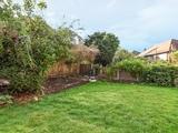 Thumbnail image 12 of Bramshill Gardens
