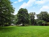 Thumbnail image 16 of Kingston Hill