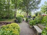 Thumbnail image 5 of Cholmley Gardens