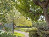Thumbnail image 9 of Queen's Club Gardens