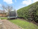 Thumbnail image 14 of Eswyn Road