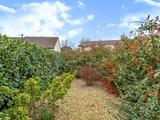 Thumbnail image 14 of Wynton Gardens