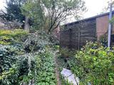 Thumbnail image 5 of Primrose Gardens